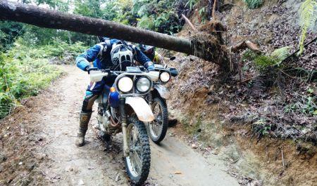 North East Vietnam Motorbike Tour