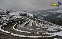 Sapa-in-snow