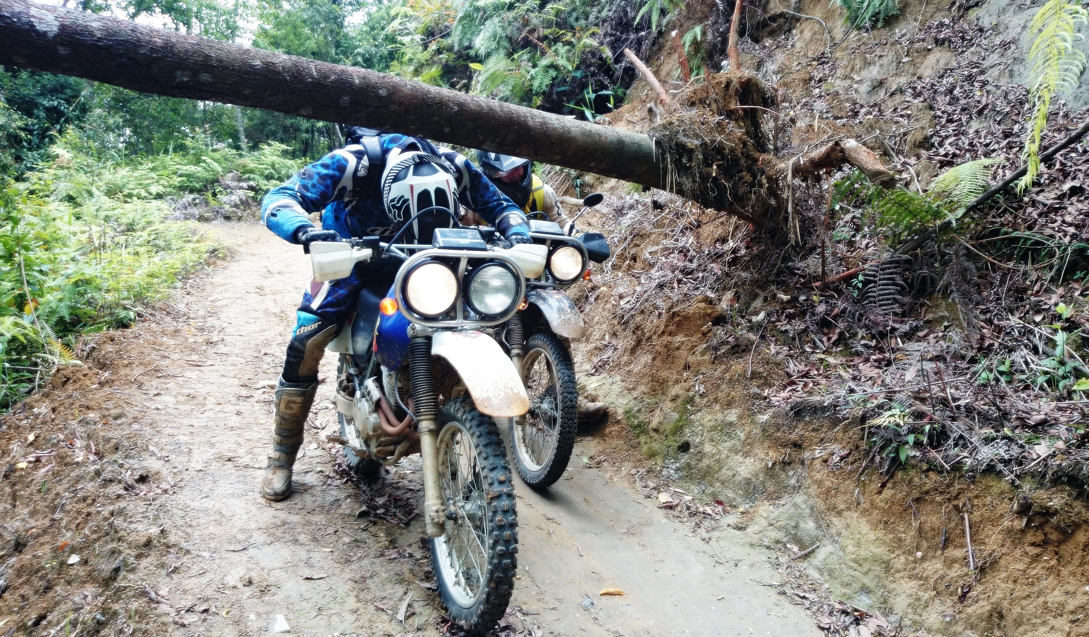 Novice Track Days Motorcycle